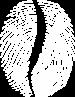 Coffee Code Main Logo Siayh Sadece-01